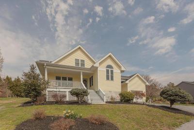 Lexington Single Family Home For Sale: 14 High Meadow Dr