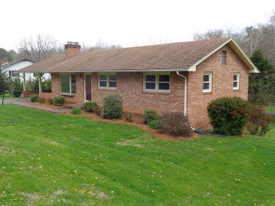 Lexington Single Family Home For Sale: 674 Valley Pike Road