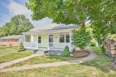 Lexington Single Family Home For Sale: 215 Alum Springs Rd