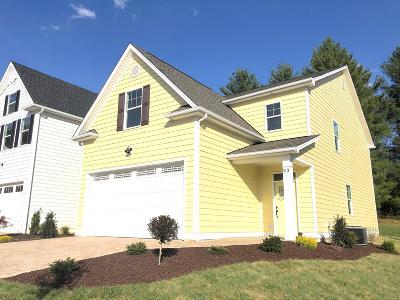 Lexington Single Family Home For Sale: 33 Chamberlain