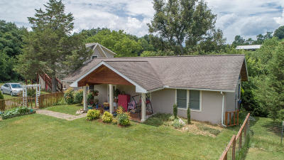 Buena Vista Single Family Home For Sale: 75 Sweet Grass Ln