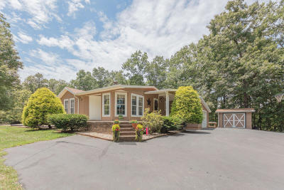 Buena Vista Single Family Home For Sale: 18 Tiffany Dr