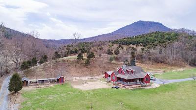Lexington Single Family Home For Sale: 665 Blacks Creek Rd