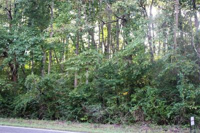 Residential Lots & Land For Sale: Maury River Road Rd