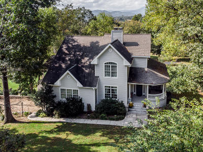 Buena Vista Single Family Home For Sale: 370 Longview Meadow Dr