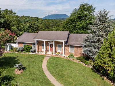 Lexington Single Family Home For Sale: 207 Shepherd Dr
