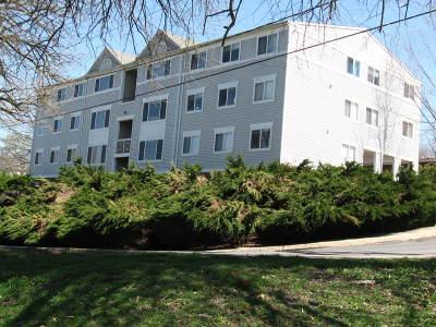 Lexington Single Family Home For Sale: 303 White St #101