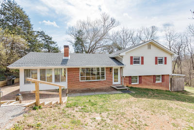 Lexington Single Family Home For Sale: 144 Cedar Hill Ln