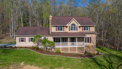 Buena Vista Single Family Home For Sale: 80 Wild Bluebird Ln