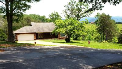Lexington Single Family Home For Sale: 50 Rustic Ridge Ln