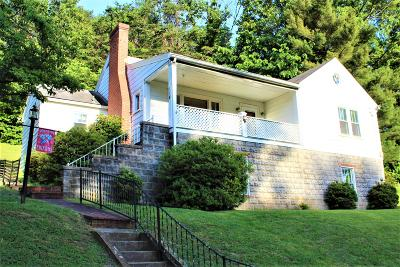 Buena Vista Single Family Home For Sale: 114 Long Hollow Rd