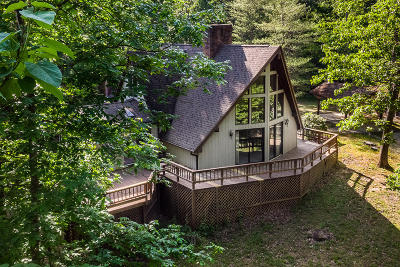 Glasgow Single Family Home For Sale: 105 Lotta Water Ln