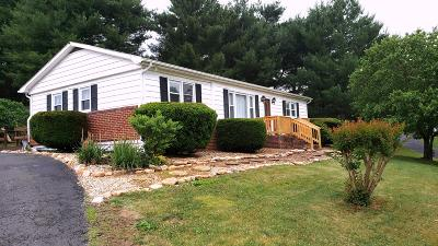 Lexington Single Family Home For Sale: 50 Valley Pike