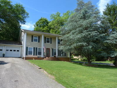 Lexington Single Family Home For Sale: 830 Shenandoah Rd