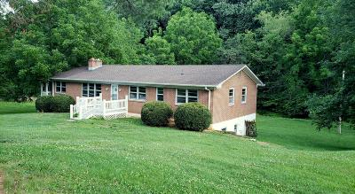 Lexington Single Family Home For Sale: 3919 Turnpike Rd