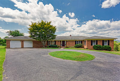 Lexington Single Family Home For Sale: 282 Gray Fox Ln