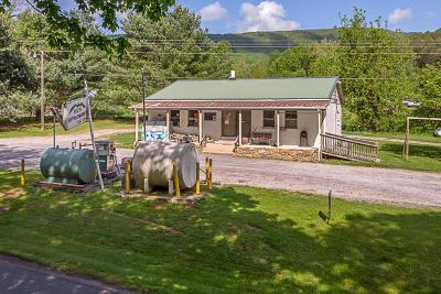 Lexington Single Family Home For Sale: 3528 S S South Buffalo Rd