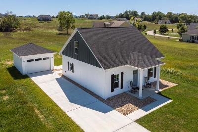 Lexington Single Family Home For Sale: 30 Florence Sarah Ln