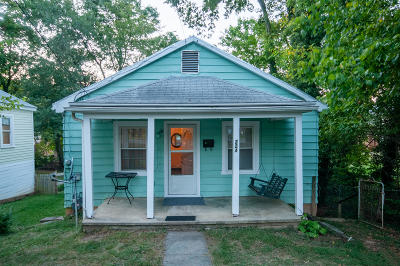 Lexington Single Family Home For Sale: 224 Maury St