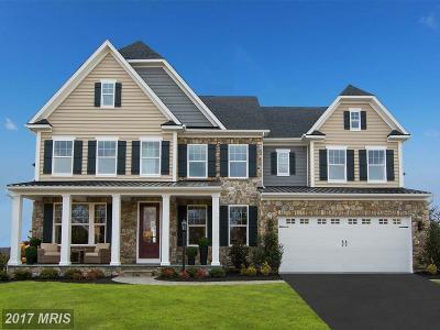Gambrills Single Family Home For Sale: 822 Sabastian Lane