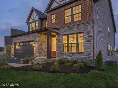 Gambrills Single Family Home For Sale: 824 Sabastian Lane
