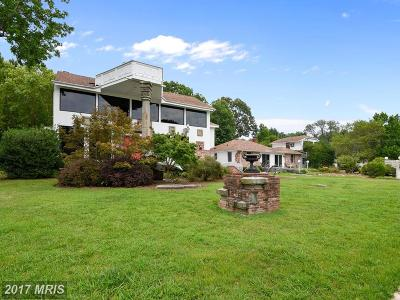 Shady Side Single Family Home For Sale: 6561 Shady Side Road