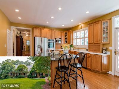 Severna Park Single Family Home For Sale: 304 Woodfarm Court