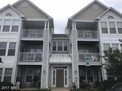 Piney Orchard, Chapel Hill Condo For Sale: 2443 Blue Spring Court #203