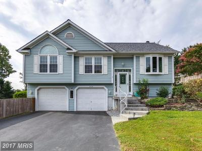 Anne Arundel Single Family Home For Sale: 1003 Elbridge Way