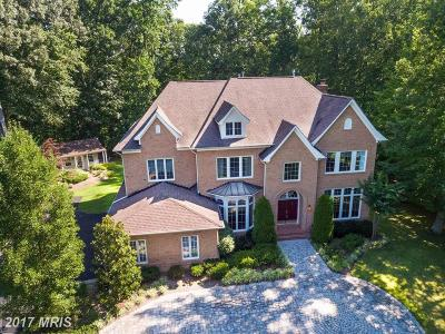 Edgewater Single Family Home For Sale: 204 Black Skimmer Court