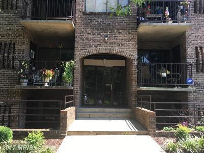 Annapolis Condo For Sale: 7 Silverwood Circle #11