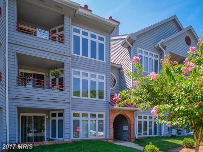 Annapolis Condo For Sale: 1136 Lake Heron Drive #3A