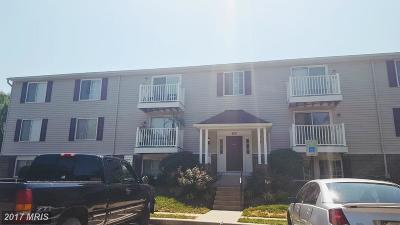 Pasadena Condo For Sale: 3503 Lochearn Court #503B
