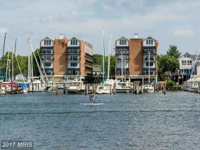 Annapolis Condo For Sale: 312 Severn Avenue #E102