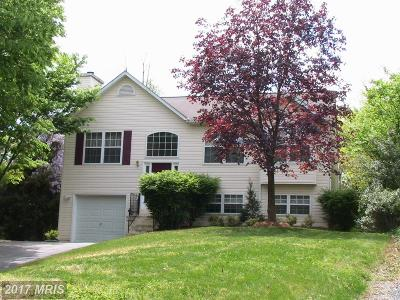 Annapolis Single Family Home For Sale: 302 President Street