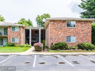 Annapolis Condo For Sale: 217 Victor Parkway #E
