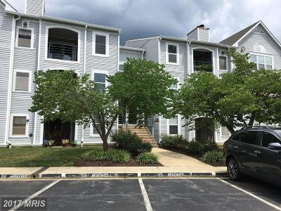 Annapolis Condo For Sale: 20 Greystone Court #J