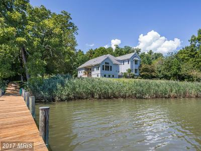 Annapolis Single Family Home For Sale: 1195 Mace Road