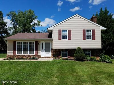 Glen Burnie Single Family Home For Sale: 702 Winton Avenue