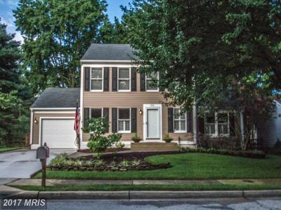 Anne Arundel Single Family Home For Sale: 315 Bridle Path Lane