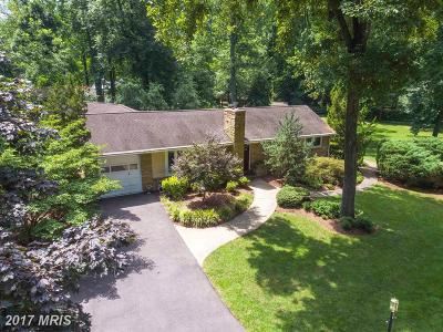 Annapolis Single Family Home For Sale: 781 Holly Drive