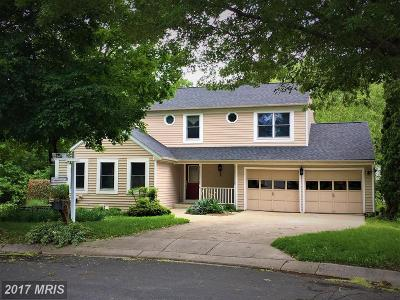 Severna Park Single Family Home For Sale: 245 Tolstoy Lane