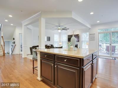 Arnold MD Single Family Home For Sale: $625,000