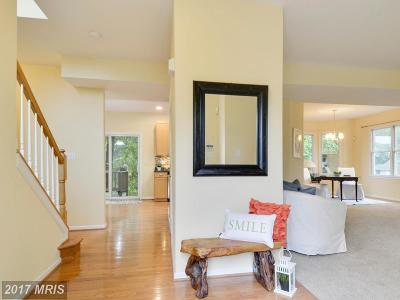 Annapolis Single Family Home For Sale: 8 Randys Lane
