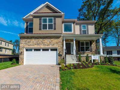 Severna Park Single Family Home For Sale: 804 Dunfer Hill Road