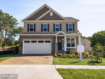 Severna Park Single Family Home For Sale: 810 Dunfer Hill Road