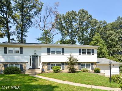 Anne Arundel Single Family Home For Sale: 207 Kathy Court