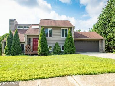 Annapolis Single Family Home For Sale: 611 Lighthouse Landing Lane