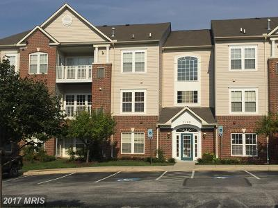 Chapel Grove, Piney Orchard Rental For Rent: 2499 Amber Orchard Court E #201
