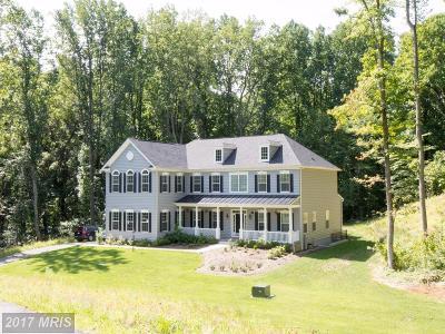 Davidsonville Single Family Home For Sale: 2520 Chapman Lane